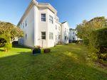 Thumbnail to rent in Grosvenor Road, Paignton