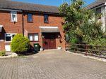 Thumbnail to rent in Langholm Road, Ashford