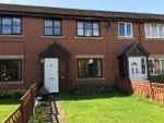 Thumbnail to rent in Tyne Green, Hexham