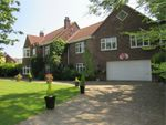 Thumbnail for sale in 45 Pinfold Lane, Tickhill, Doncaster, South Yorkshire