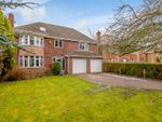 Thumbnail for sale in Burton Road, Lincoln