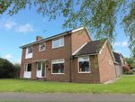Thumbnail to rent in Boydlands, Capel St. Mary, Ipswich