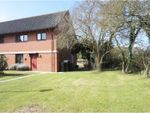 Thumbnail for sale in Chestnut Road, Pulham St Mary