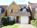 Thumbnail to rent in Camus Close, Church Crookham