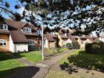 Thumbnail to rent in Benskins Close, Berden, Bishop's Stortford