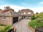 Thumbnail for sale in Jacklyns Lane, Alresford, Hampshire