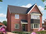 "Thumbnail to rent in ""The Oxford"" at Stafford Road, Eccleshall, Stafford"