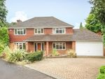 Thumbnail to rent in Norton Park, Sunninghill