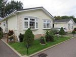 Thumbnail for sale in Ely Road, Waterbeach, Cambridge