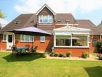 Thumbnail for sale in Chapel Road, Swanmore, Southampton