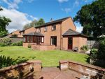 Thumbnail for sale in Southfield, Burgh-By-Sands, Carlisle, Cumbria