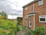 Thumbnail for sale in Raphael Close, Basingstoke