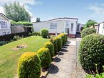 Thumbnail to rent in Dukesmead Mobile Home Park, Werrington, Peterborough