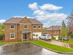 Thumbnail to rent in High Oaks Close, Coulsdon, Surrey