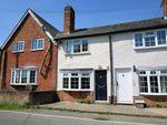 Thumbnail to rent in High Beech Cottage, Sampford Hall Lane, Little Sam, Saffron Walden, Essex
