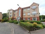 Thumbnail to rent in Imlach Place, Motherwell