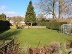 Thumbnail for sale in Jacklyns Lane, Alresford