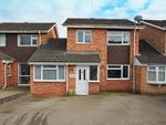 Thumbnail for sale in Lestock Close, Bilton, Rugby