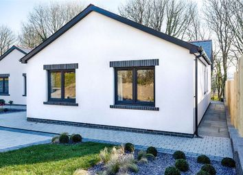 Thumbnail 3 bedroom detached bungalow for sale in Parsonage Court, Parsonage Lane, Begelly