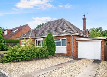 Thumbnail 3 bed detached bungalow for sale in Keswick Road, Witley, Godalming