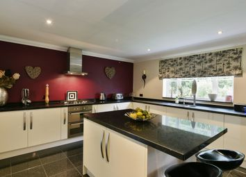 Thumbnail 5 bed detached house for sale in Farriers Close, Stradbroke, Eye