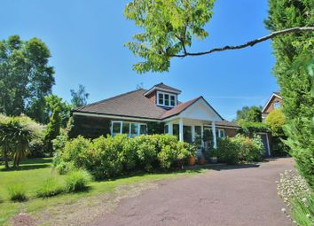 Thumbnail 2 bed detached bungalow for sale in Newbury Lane, Cousley Wood, Wadhurst