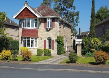 Thumbnail 4 bedroom detached house to rent in Springwood, Haxby, York