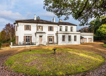 Thumbnail 7 bed property for sale in High Street, Dormansland, Lingfield