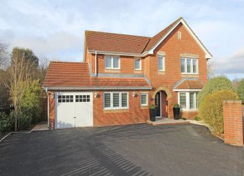 Thumbnail 4 bed detached house for sale in Amey Gardens, Totton, Southampton