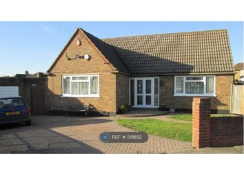 Thumbnail 4 bedroom bungalow to rent in Rusland Avenue, Orpington