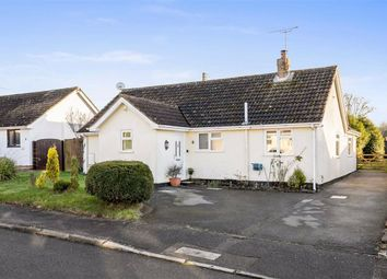 Thumbnail Detached bungalow for sale in Whitehall Way, Sellindge Ashford, Kent