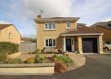 Thumbnail 4 bed detached house for sale in Meadow Brook, Roundswell, Barnstaple