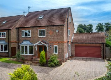Thumbnail 5 bedroom detached house for sale in Back Lane, Riccall, York