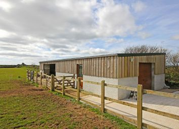 Thumbnail Land for sale in Paddock, Stables And Workshop, Ruan High Lanes, Veryan