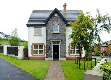 Thumbnail 3 bedroom detached house for sale in Coopers Mill Avenue, Dundonald, Belfast