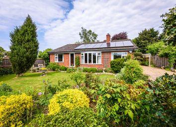 3 bed detached bungalow for sale in The Street, Shotesham All Saints NR15