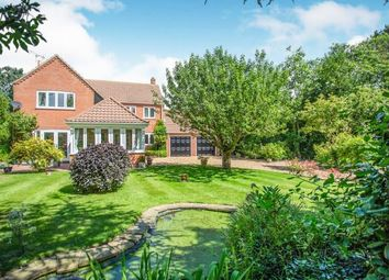 Thumbnail 4 bed detached house for sale in Stalham Green, Norwich, Norfolk
