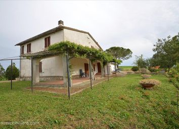 Thumbnail Farm for sale in Strada Statale 323, Scansano, Tuscany