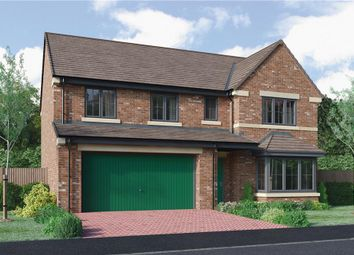 "Thumbnail 5 bedroom detached house for sale in ""The Buttermere Alternative"" at Roundhill Road, Hurworth, Darlington"