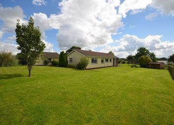 Thumbnail 3 bed detached bungalow for sale in Sampford Peverell, Tiverton
