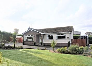Thumbnail 3 bed detached bungalow for sale in Ballynashee Road, Ballyclare
