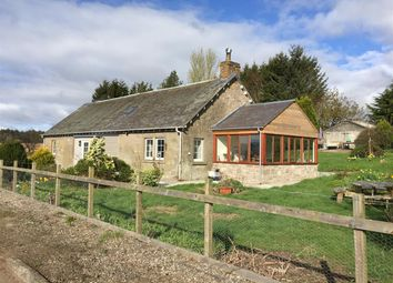 Thumbnail 3 bed cottage to rent in Cairnie Toll, Upper Cairnie, Perth