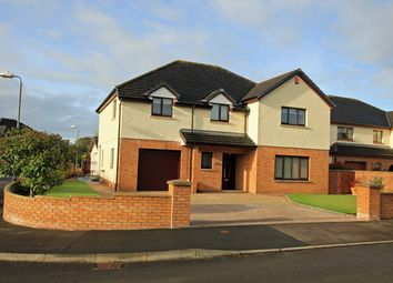 Thumbnail 4 bed detached house for sale in Gwynfan, Nantycaws, Carmarthen, Carmarthenshire
