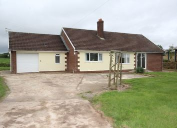 Thumbnail 3 bedroom detached bungalow to rent in Black Dog, Crediton