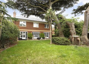 Thumbnail 5 bed detached house for sale in Prospect Place, Wimbledon
