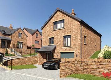 Thumbnail 4 bedroom detached house for sale in Blossom Hill, Lazonby, Penrith