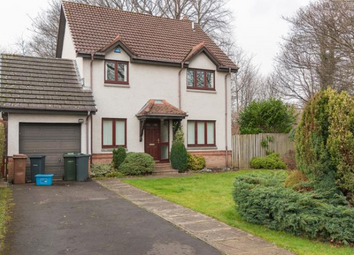 Thumbnail 4 bed detached house to rent in Cameron March, Edinburgh EH16,