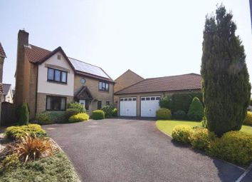 Thumbnail 4 bed detached house for sale in Sheppards Walk, Chilcompton, Radstock