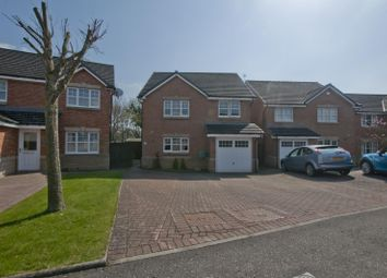 Thumbnail 4 bedroom detached house for sale in 21 The Pheasantry, Alloa, Clackmannanshire 1Ph, UK