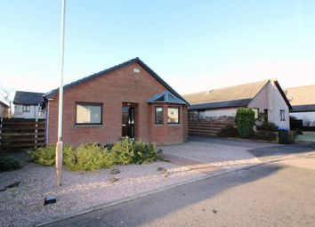 Thumbnail 4 bedroom detached bungalow for sale in Walnut Grove, Blairgowrie